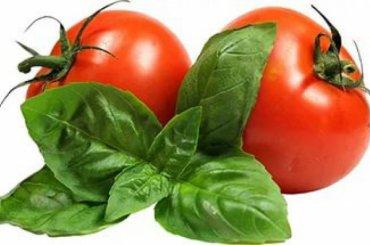 Белорусы несмогли провезти запрещенные помидоры вПетербург
