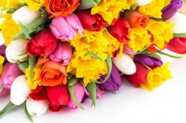 Магазины Петербурга иЛенобласти к8Марта заполонят цветы из27 стран мира