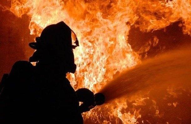 Пенсионеры заживо сгорели вНазии