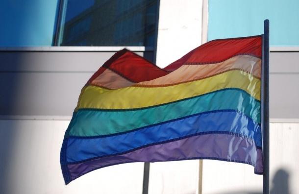 ВПетербурге вминувшем году наЛГБТ-людей нападали 26 раз