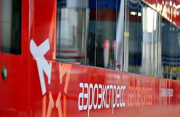 Аэроэкспресс доПулкова будет стоить 19 млрд рублей