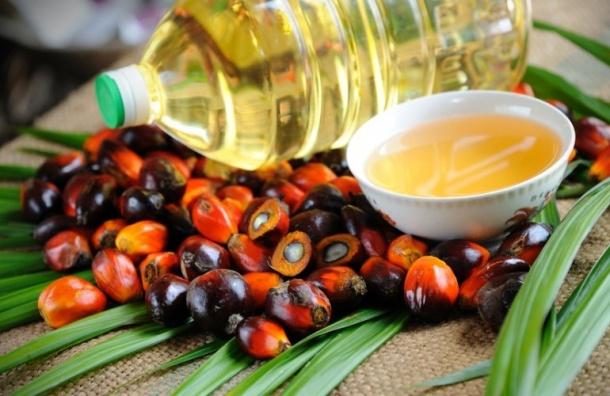 ВПетербурге разработчиков пальмового масла могут отнять налоговых льгот