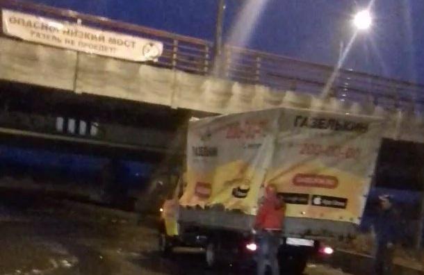 «Мост глупости» сделают заметнее для Газелей