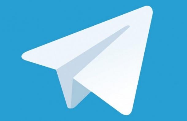 Марина Шишкина завела Telegram-канал, «пока окончательно неприкрыли»