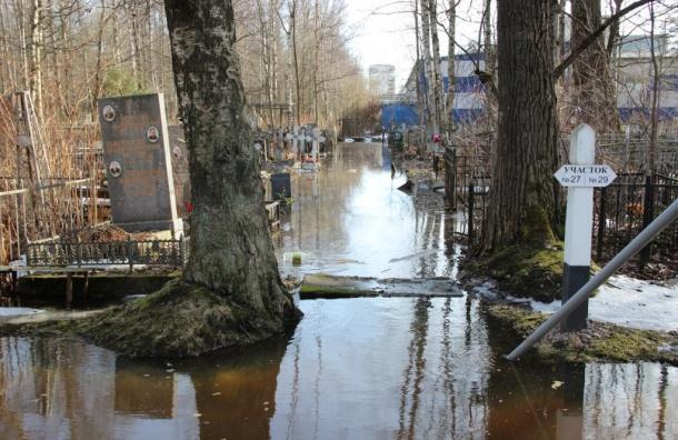 Серафимовское кладбище затопило вПетербурге