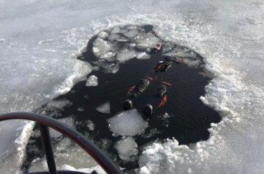 Труп мужчины выплыл из-под льда вФинском заливе