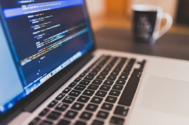 Талантливых программистов привезут вПетербург