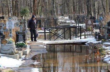 Грунтовые воды подтопили петербургское кладбище