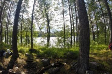 Экологический лагерь появится вЛадожских шхерах