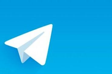 Еще три иностранные организации осудили запрет Telegram