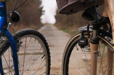 Петербуржцам разрешат бесплатно провозить велосипеды вэлектричках