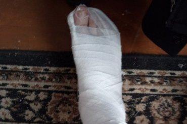Попавший под танк петербуржец опубликовал видео случившегося
