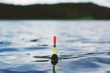 Запрет наловлю рыбы вступит всилу вПетербурге