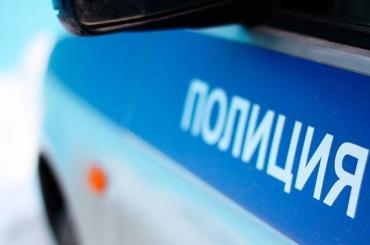 Микроавтобус насмерть сбил пешехода вЛужском районе