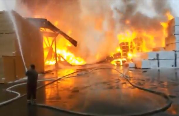 Крупнейший лесопильный завод горит вЛенобласти