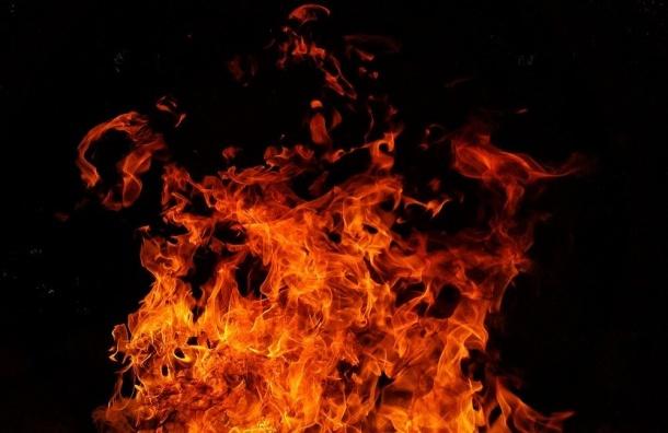 МЧС: Петербург попал вантирейтинг поуязвимости кпожарам