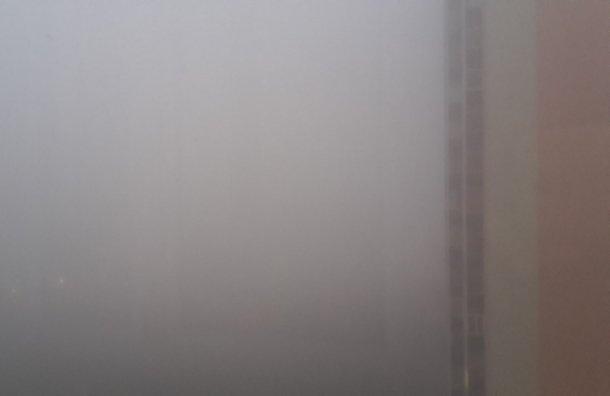 2мая вПетербурге назамену ливню иветру придёт туман