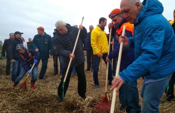 ВПетербурге разделят сор иочистят берега Финского залива