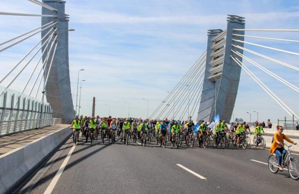 Порядка 18 тысяч велосипедистов проехали поПетербургу