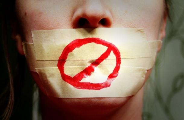 Союз журналистов Петербурга раскритиковал закон об«уголовке» заподдержку санкций