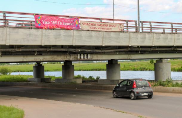 Албин: «мост глупости»— «памятник бестолковости»