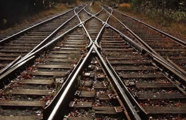 Дополнительные пригородные поезда запустят вПетербурге иЛенобласти