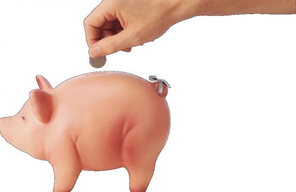 Еще два комитета Смольного рассказали, какую получают зарплату ихсотрудники
