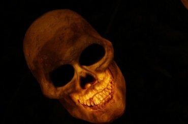 Спортсмены нашли человеческий череп воВсеволожске
