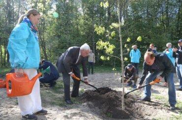 Полтавченко посадил дубы икаштаны вСестрорецке