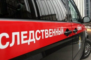 Петербургская школьница погибла, спасая кошку