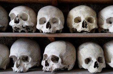 Кости нашли вхраме Благовещения наВасильевском