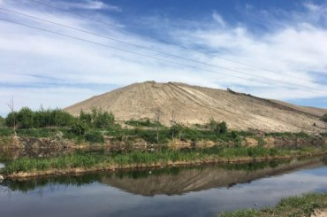 Шишкина: намусорный полигон Новоселки продолжают свозить мусор