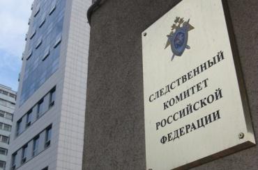 Бастрыкин поручил проконтролировать расследованияЧП сдетьми вПетербурге