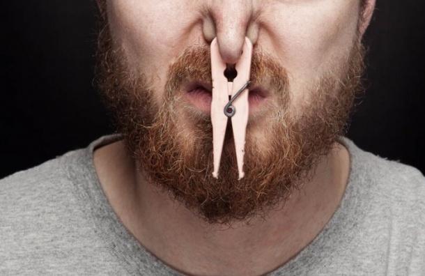 Депутаты ЗакСа предложили оценивать качество воздуха позапаху