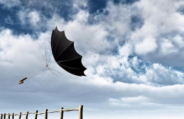 МЧС предупреждает оштормовом ветре вПетербурге