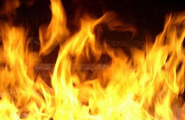 Полицейский вывел иностранных болельщиков изгорящего хостела вПетербурге