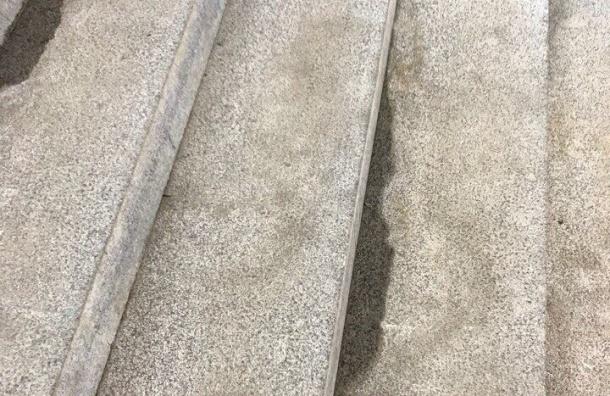 Очевидцы обнаружили «жидкие ступени» на«Беговой»