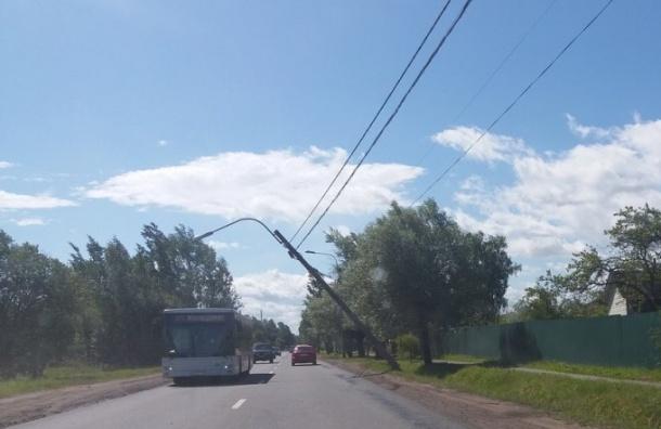 Штормовой ветер повалил вПетербурге деревья истолбы