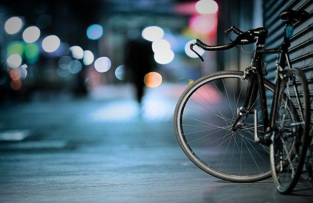 Велосипедные маршруты Петербурга появились накартах