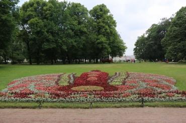 ВАлександровском саду появилась цветочная Ростральная колонна