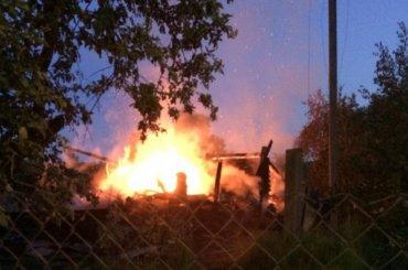 Детей спасли изгорящего дома вЛенобласти