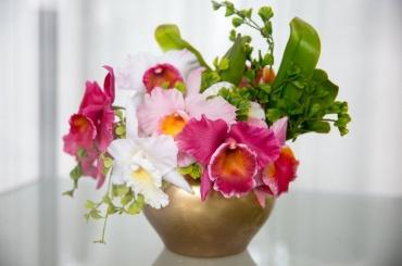 «Диалоги цветов» можно послушать вмузее-заповеднике «Царское Село»