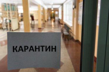 Детсад вКолпине закрыли накарантин из-за кишечной инфекции