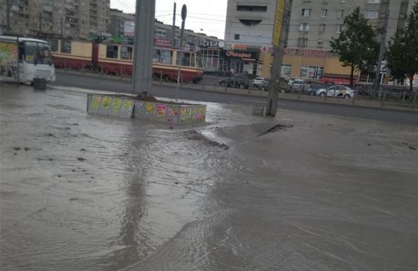 Проспект Просвещения затопило из-за прорыва трубы