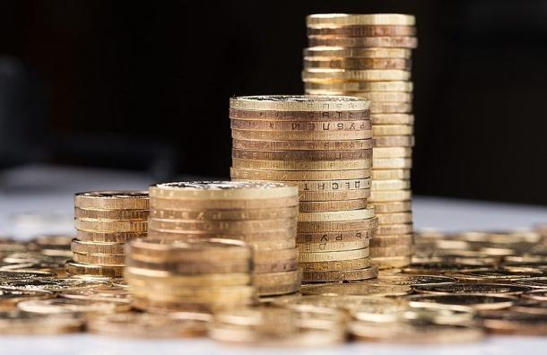 ВПетербурге увидели падение вложений денег