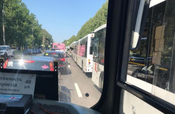 Автобусы встали «паровозиком» наПолюстровском проспекте вПетербурге