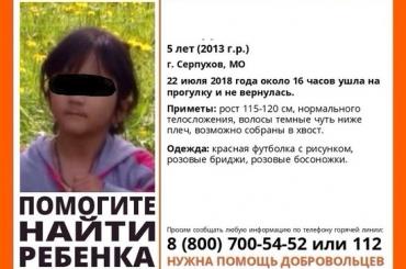 Полиция нашла подозреваемого вубийстве 5-летней вПодмосковье