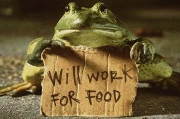 Работодатели вПетербурге заманивают сотрудников печеньками
