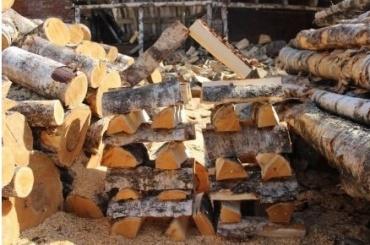 Муниципалы закупят для малоимущих дрова