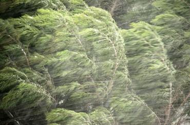 МЧС предупредило обусилении ветра
